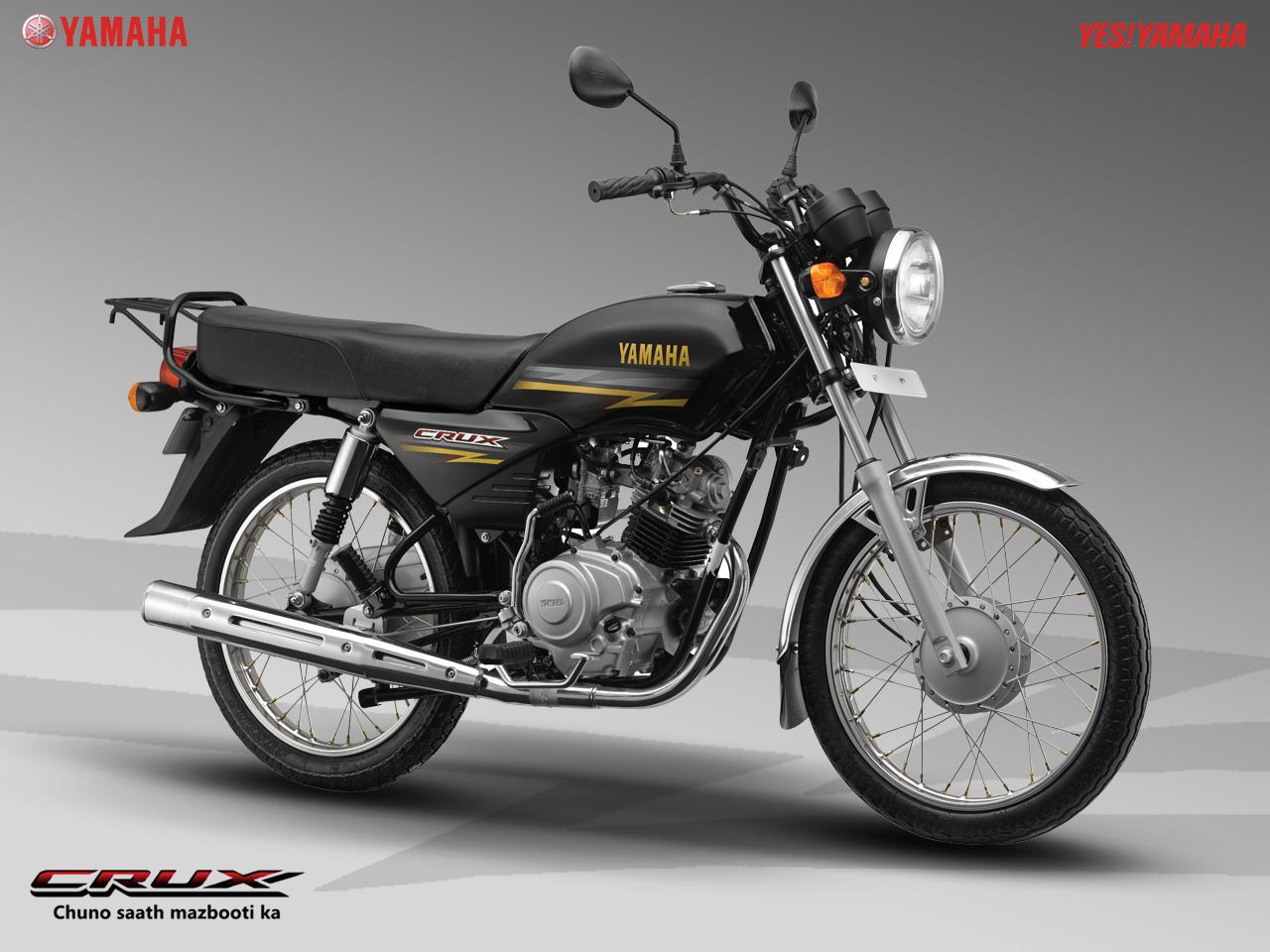 2013 Yamaha 100  Picture 2662733  BikePicscom